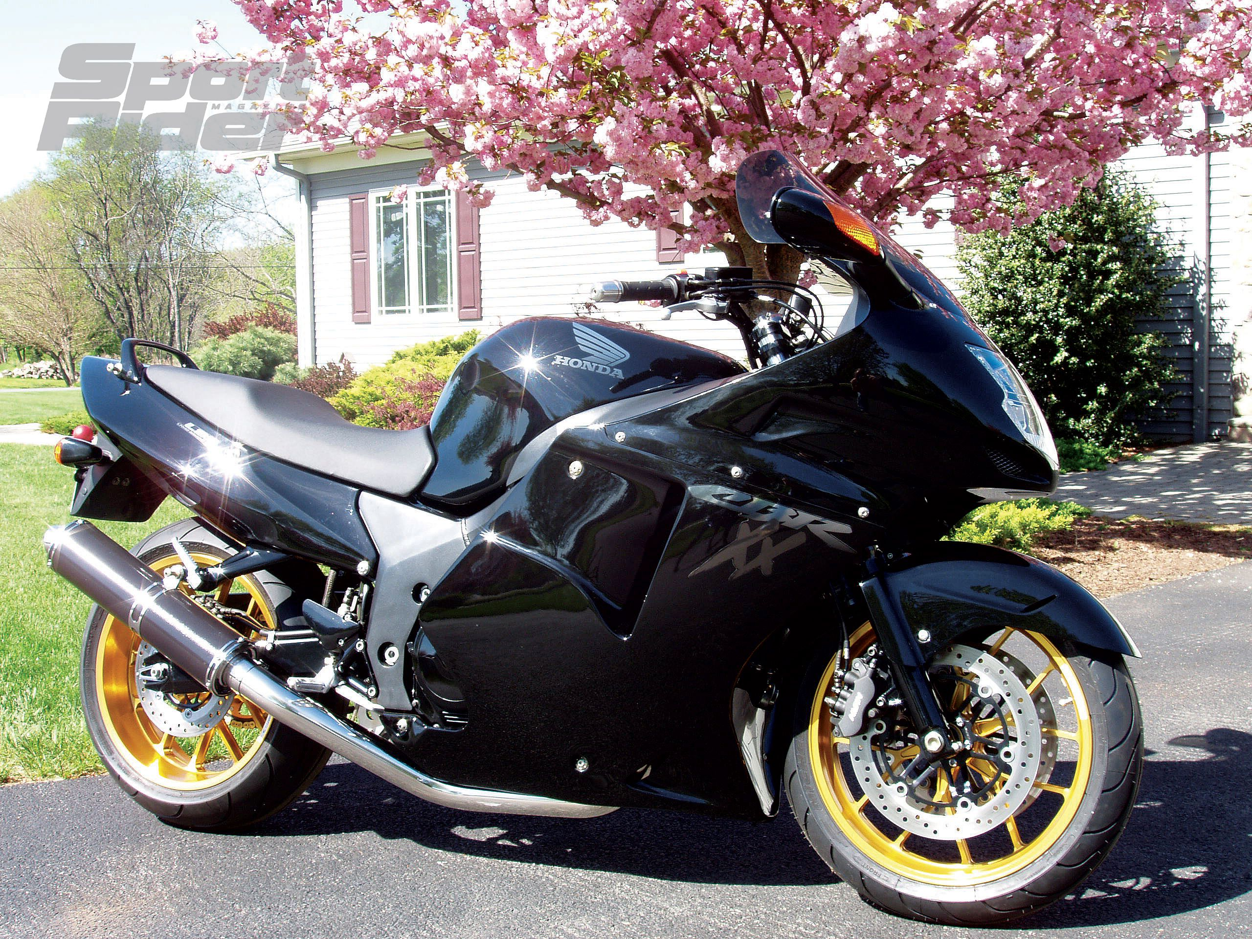 1997-2003 Honda CBR1100XX - Great Sportbikes of the Past | Cycle World