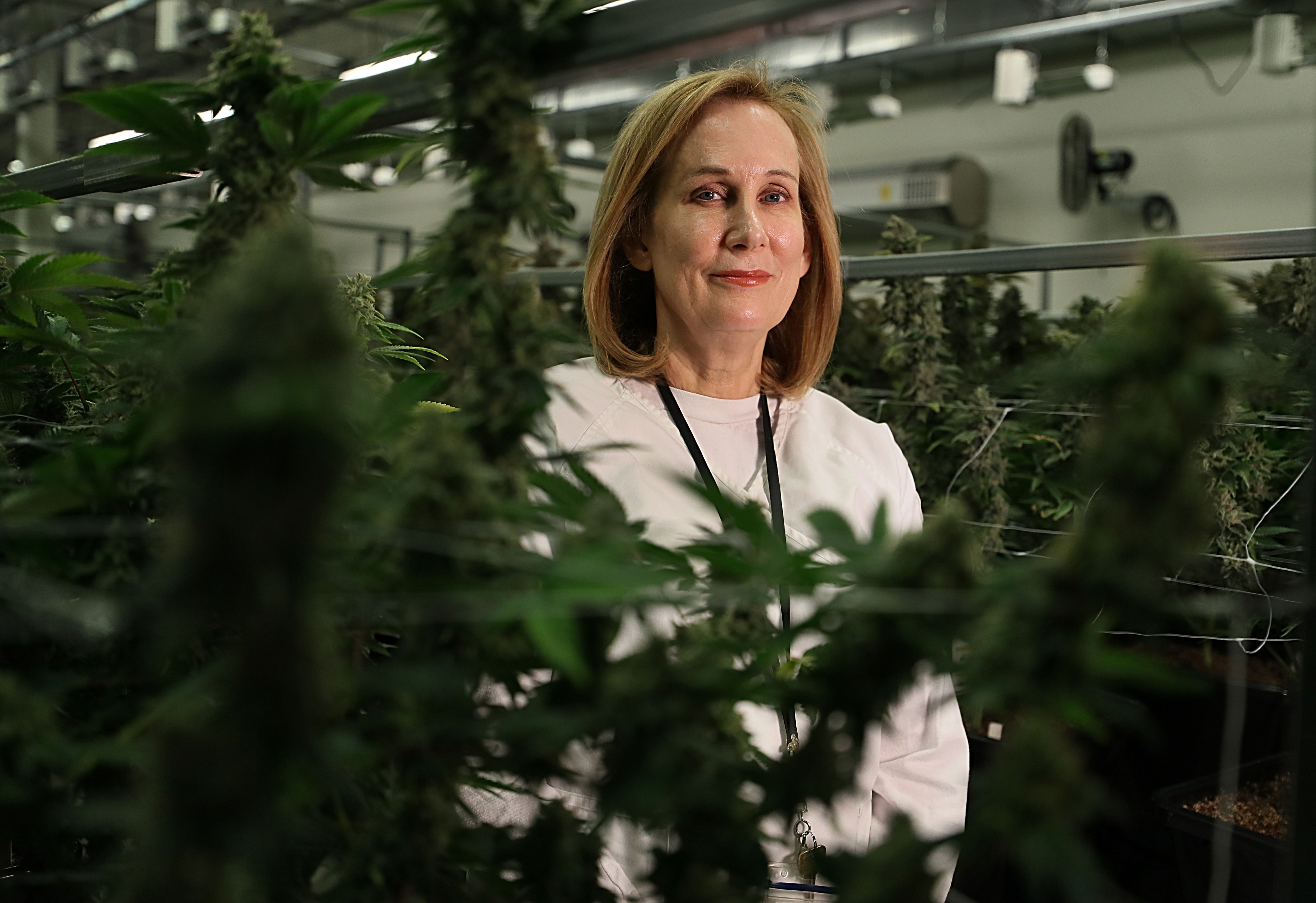 For Physician Cancer Battle Inspired Cannabis Company The