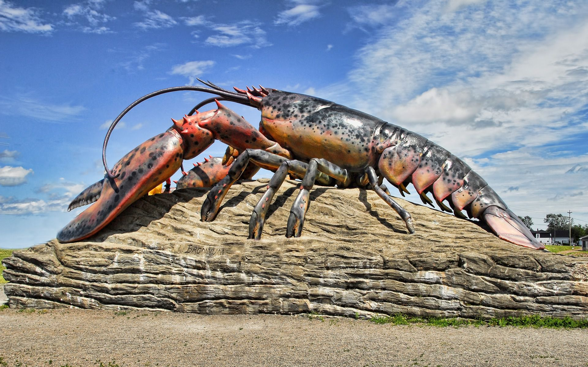 No One Knows If Lobsters Feel Pain Which Makes Boiling Them Alive Rather Complicated Popular Science