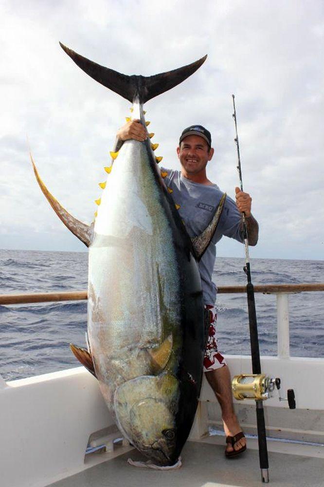 10 Of The Biggest Yellowfin Tuna Catches Sport Fishing Magazine