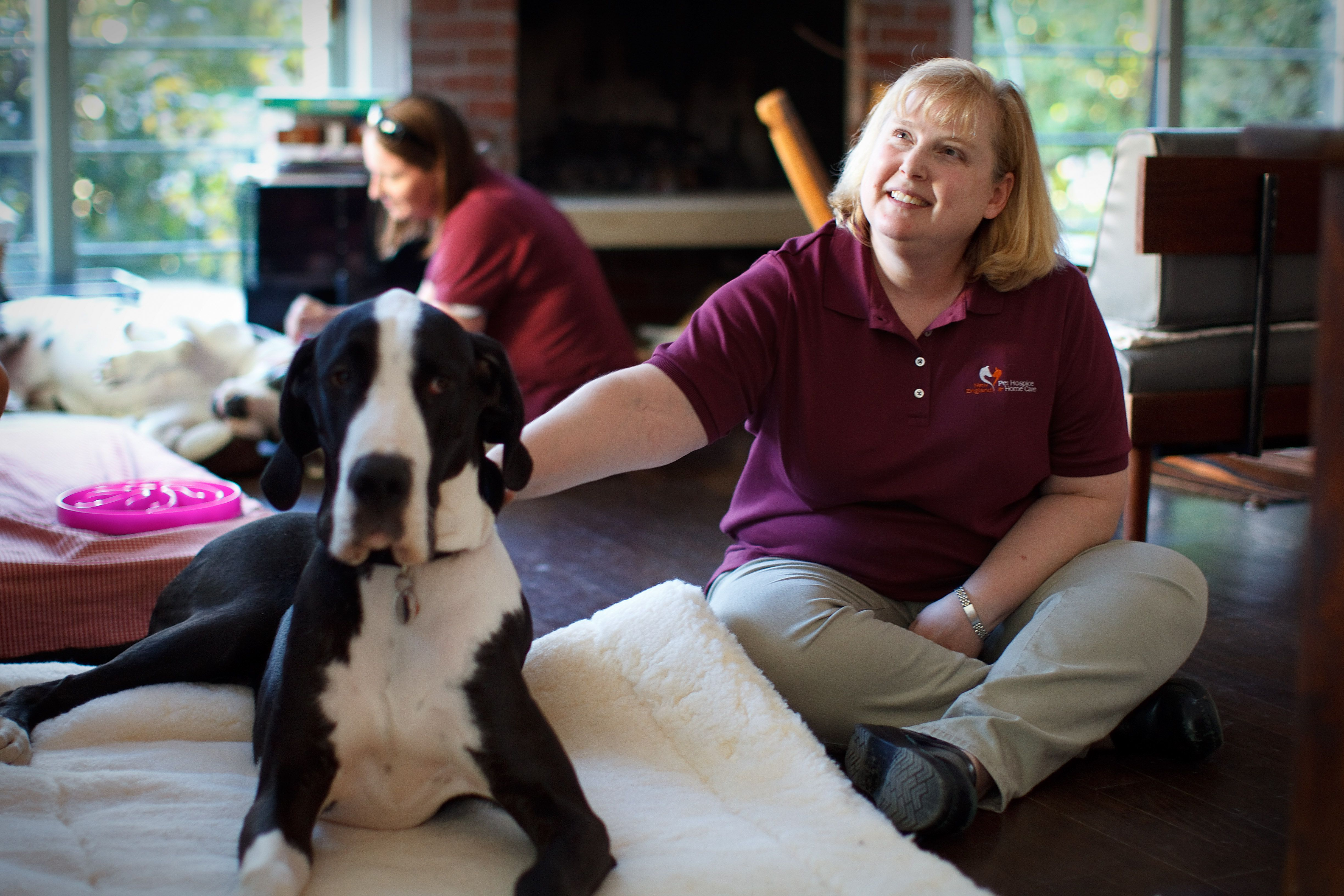 Happier ending for dying pets and their owners - The Boston Globe