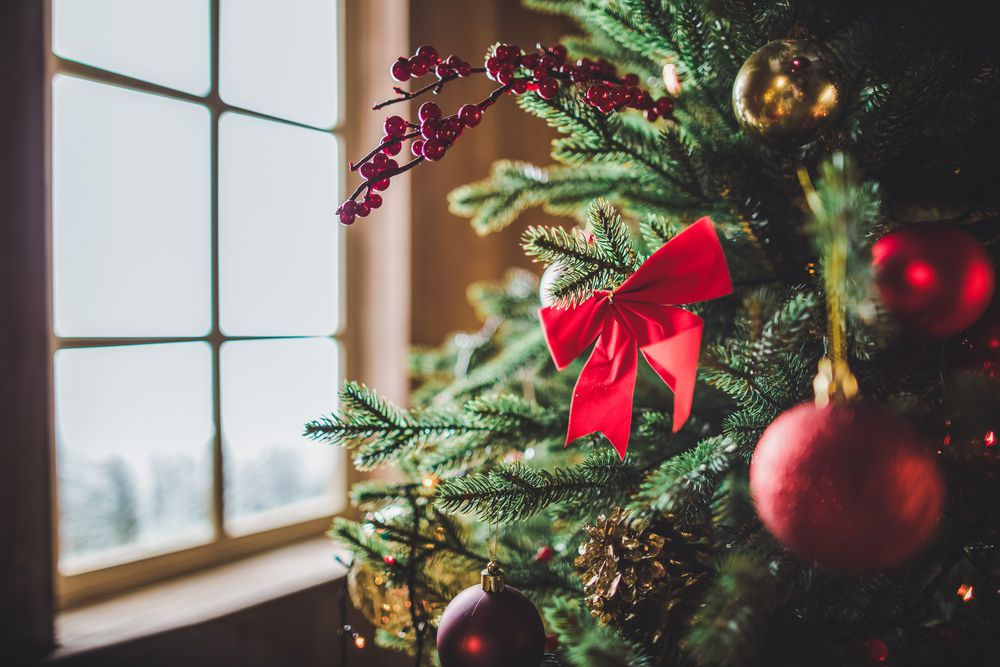 How To Keep A Christmas Tree Fresh For As Long As Possible Popular