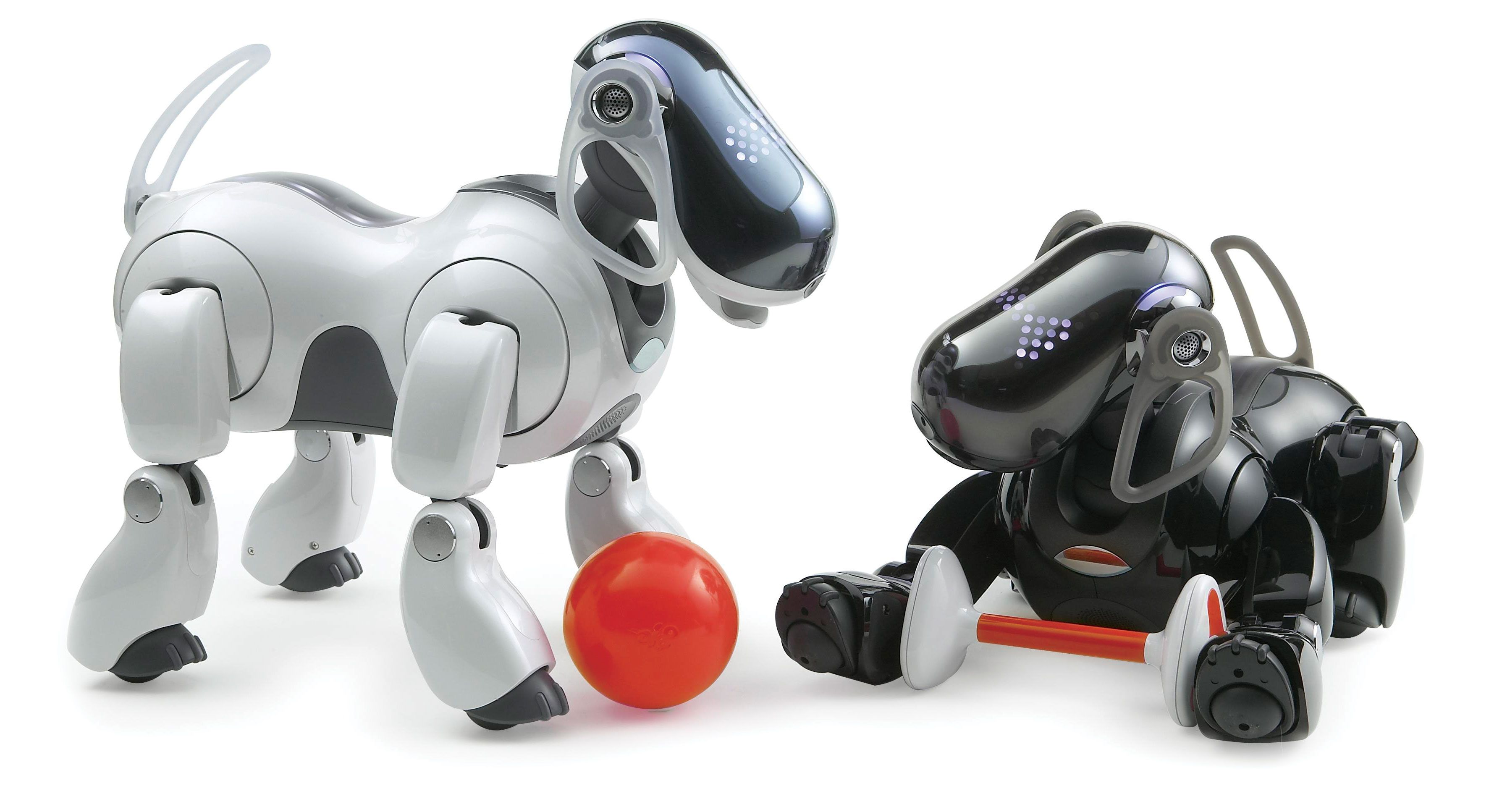 Robot Pets Have A Leg Up On Fido Popular Science