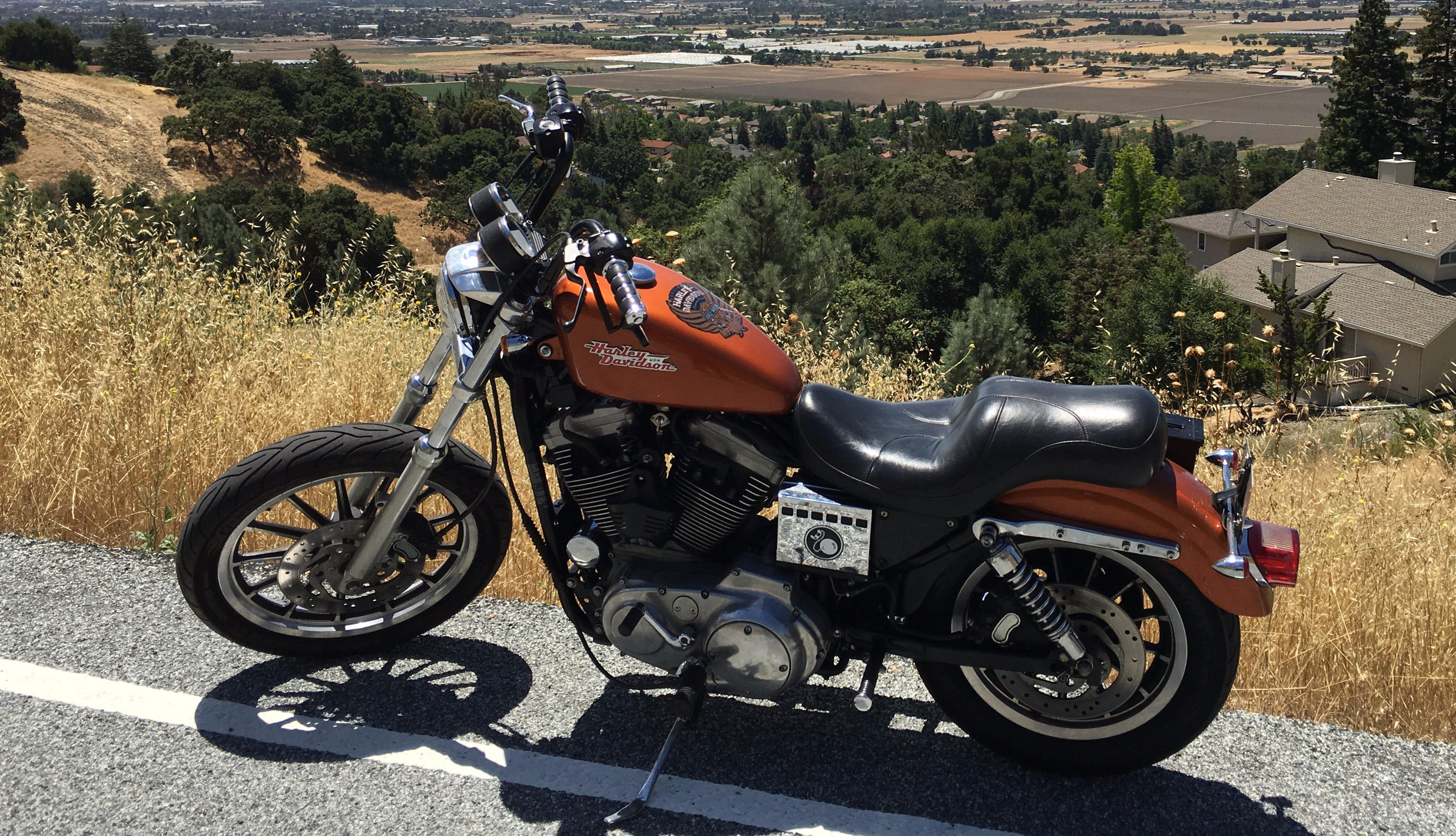 Here's What A $4,000 Harley Sportster 1200 And Elbow Grease Looks