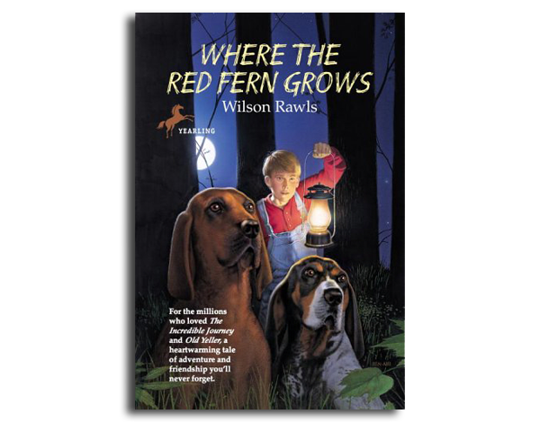 d7f0d9eeb2530 The 16 Best Fiction Adventure Books Every Outdoor Kid Should Read | Outdoor  Life