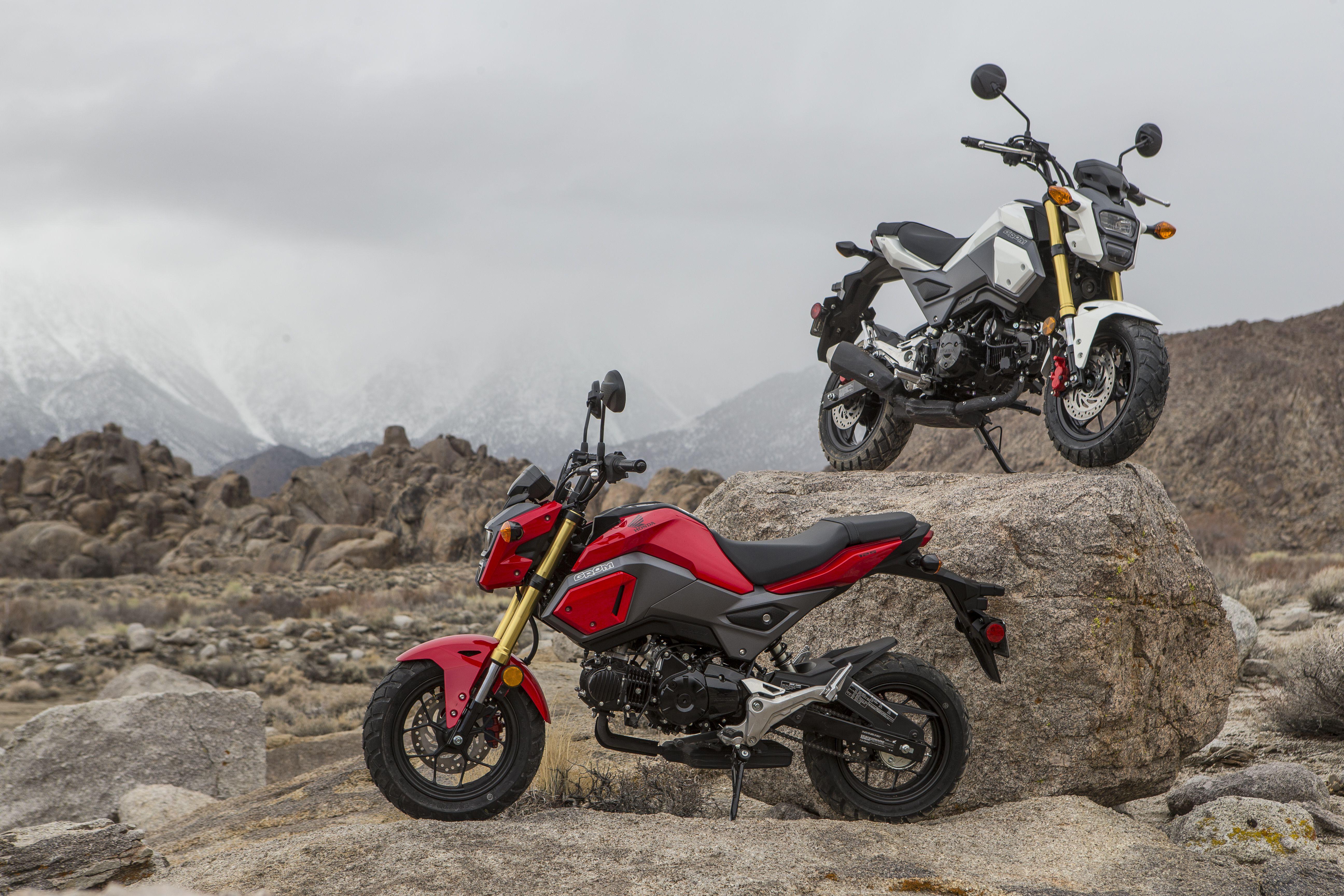 Honda Grom Off-Road Adventure Motorcycle Fun Trip | Cycle World