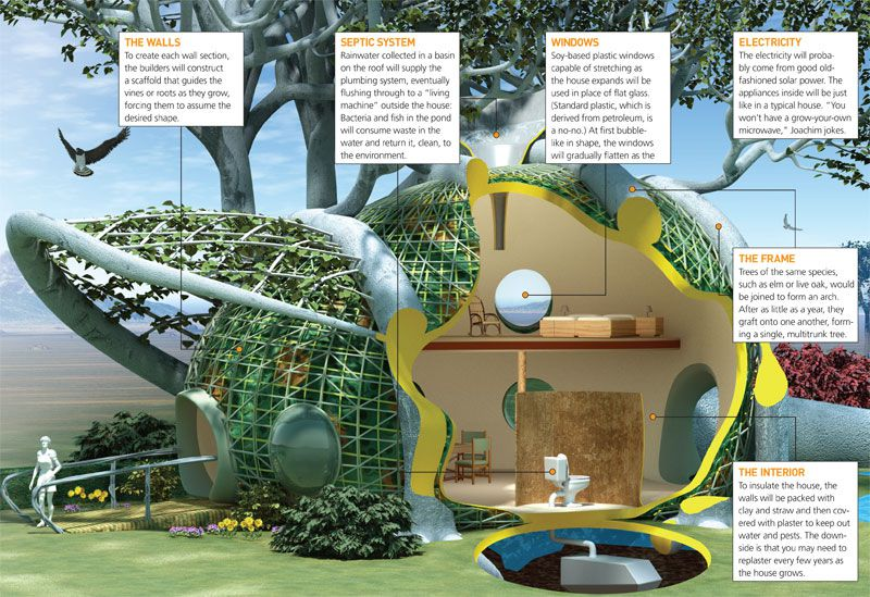 Grow Your Second Home | Popular Science
