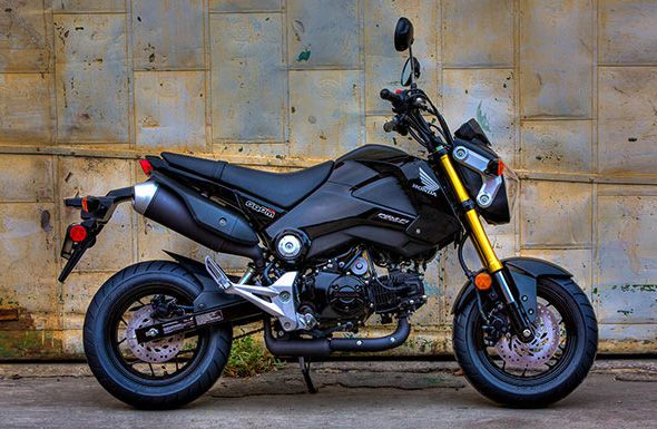 Honda Grom Review >> 2014 Honda Grom 125 First Look Review Photos Video Specs Cycle