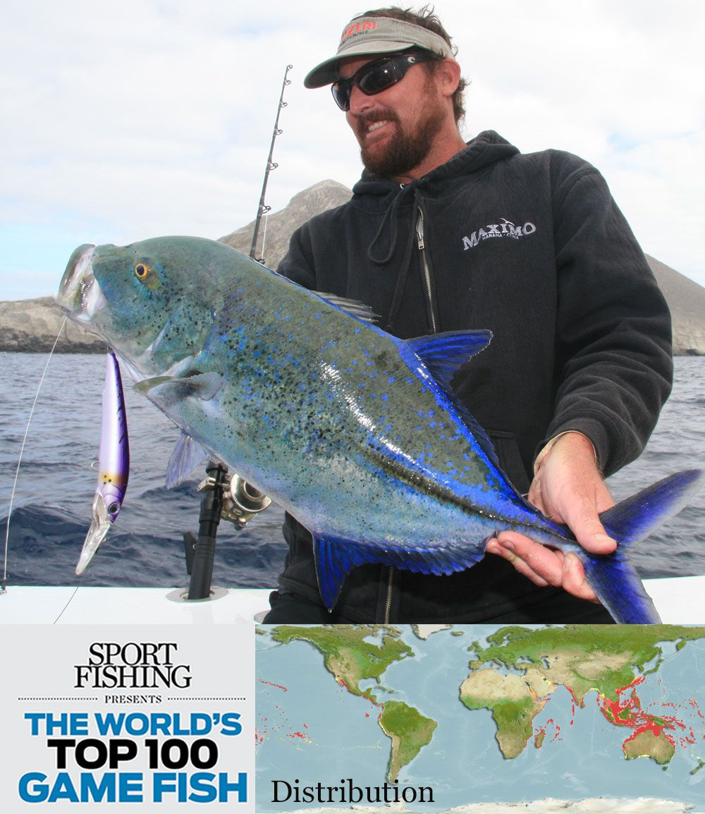 The World's Top 100 Saltwater Game Fish | Sport Fishing Magazine