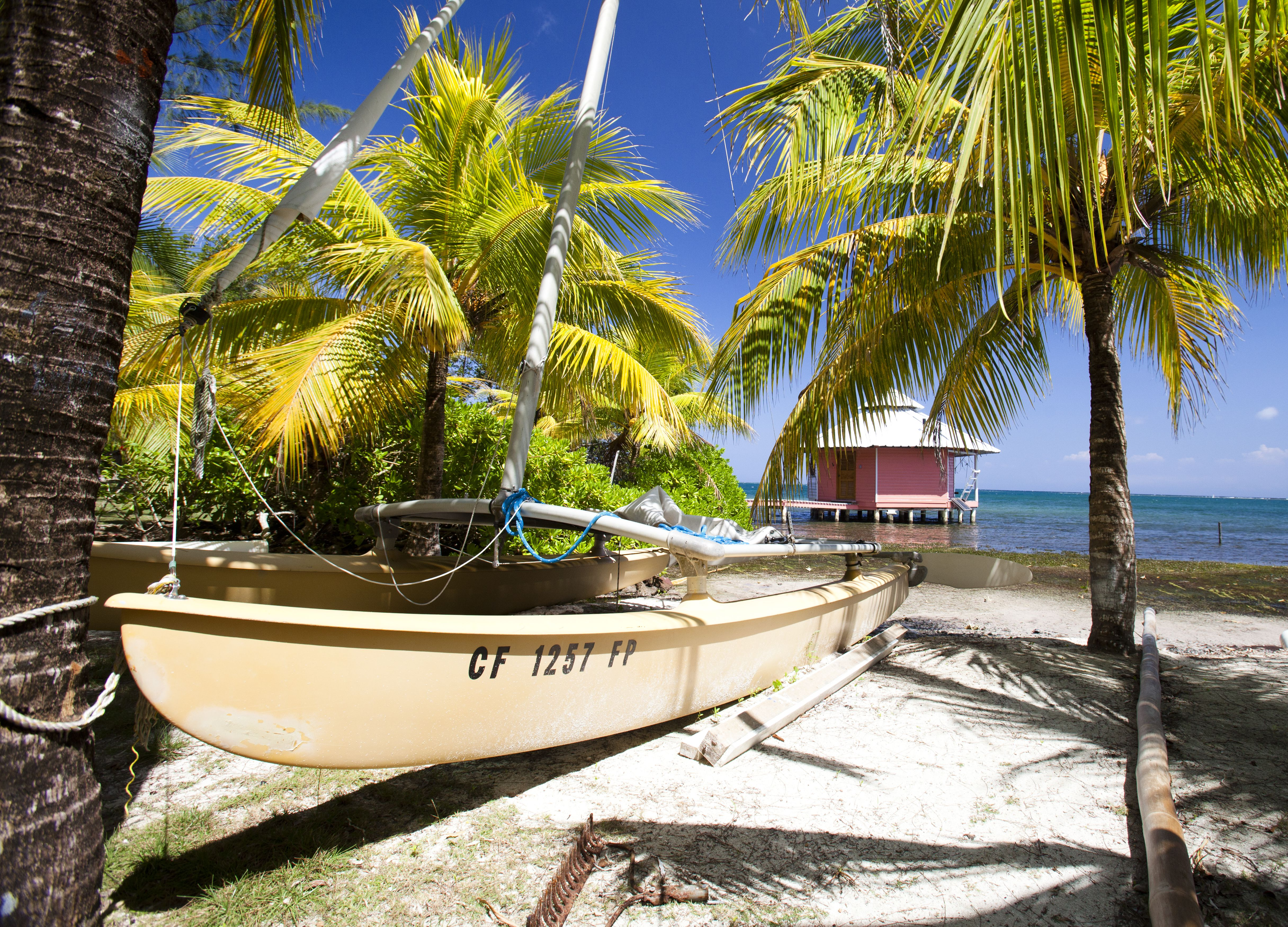 How many retired single woman are living in roatan as ex patsy