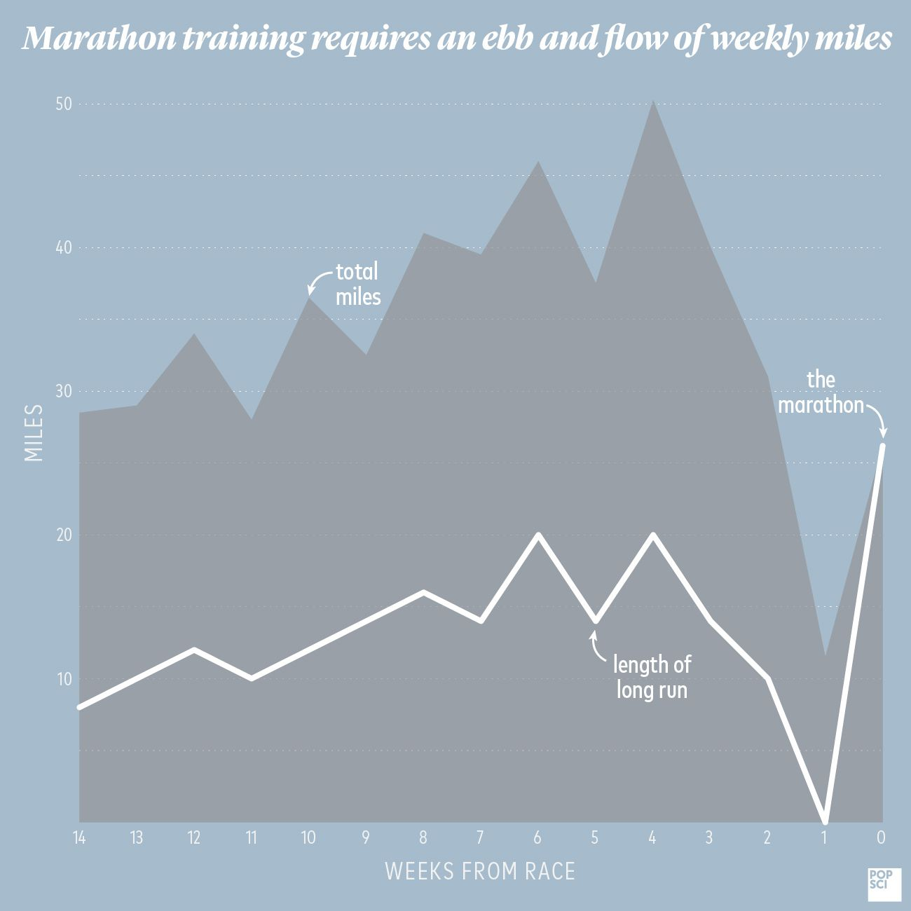 science helped me run my first marathon in 3 hours and 21 minutes | popular  science