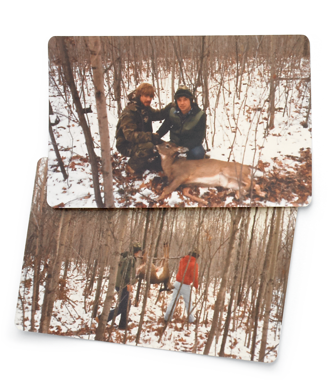 The Comeback 20 Memories Of The Return Of The Whitetail Deer Outdoor Life
