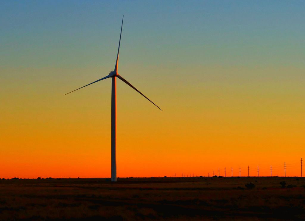 Wind Turbines Kill More Than 600,000 Bats A Year  What Should We Do