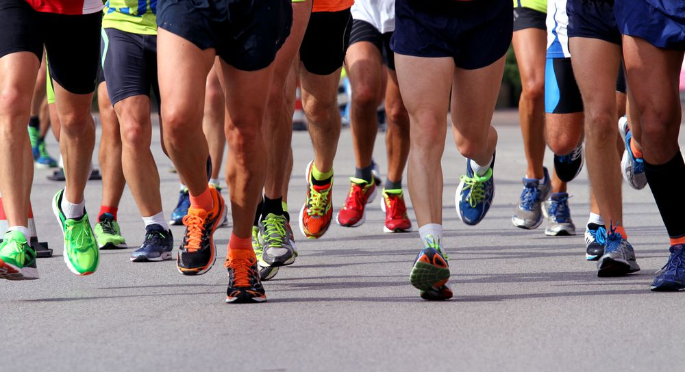 After the NYC marathon, where does all the poop go