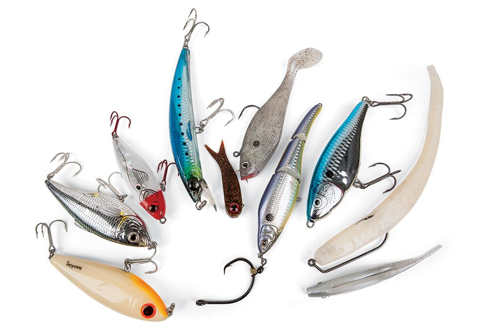 10 Best Tarpon Lures, Bait for Tarpon | Sport Fishing Magazine