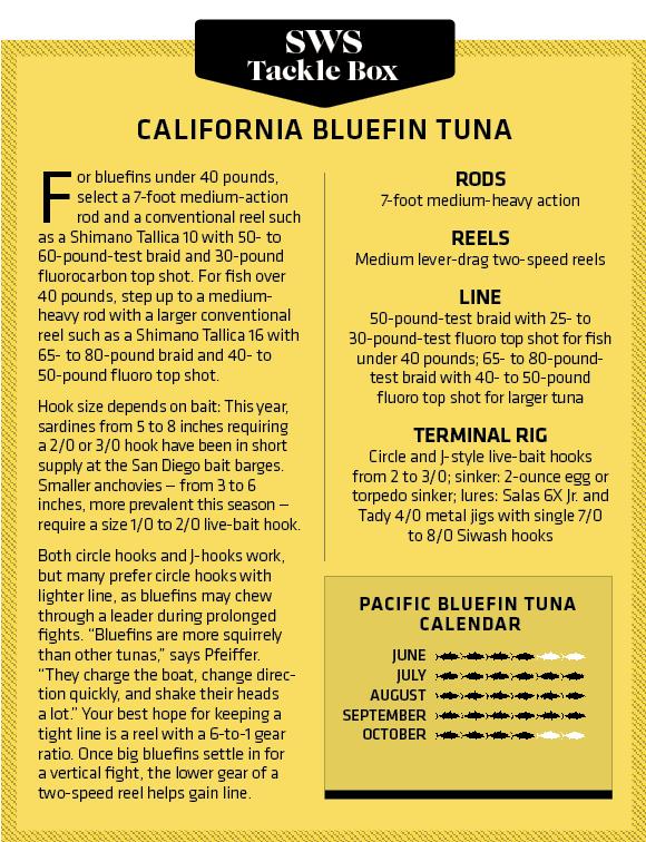 Southern California Bluefin Tuna Fishing | Salt Water Sportsman