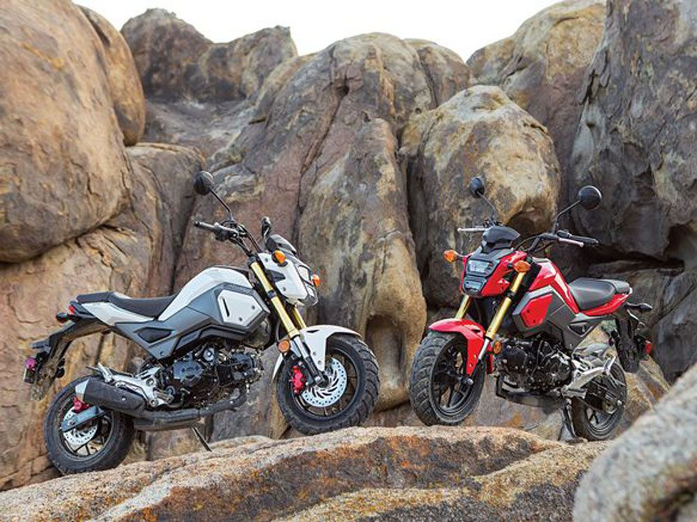 10 Great Small-Displacement Motorcycles | Cycle World