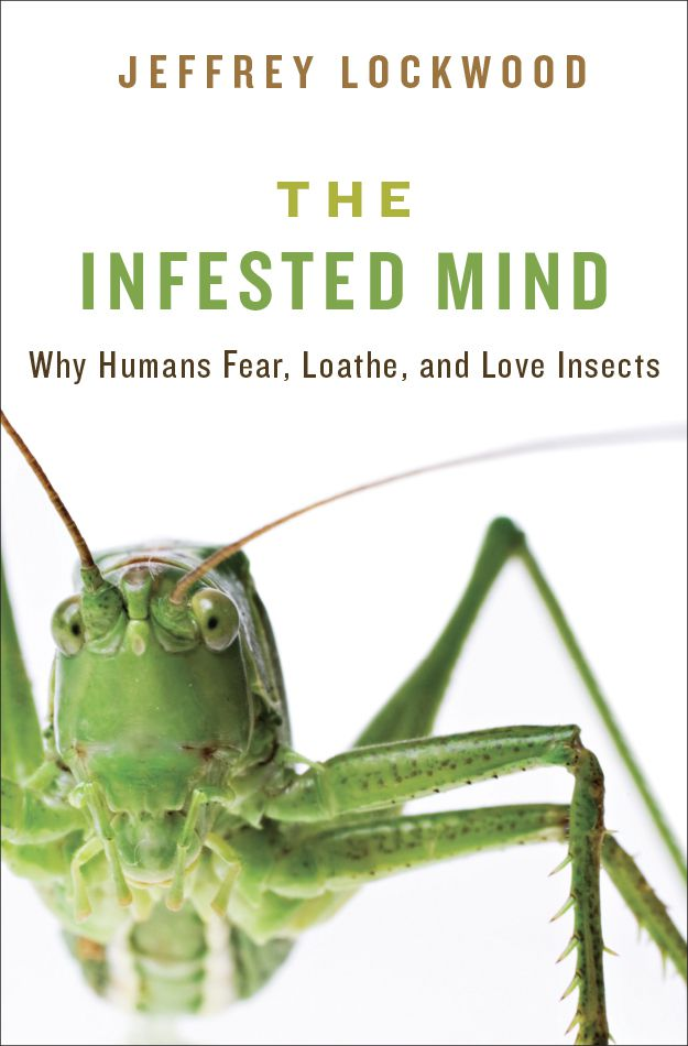 Fear of Insects | Popular Science
