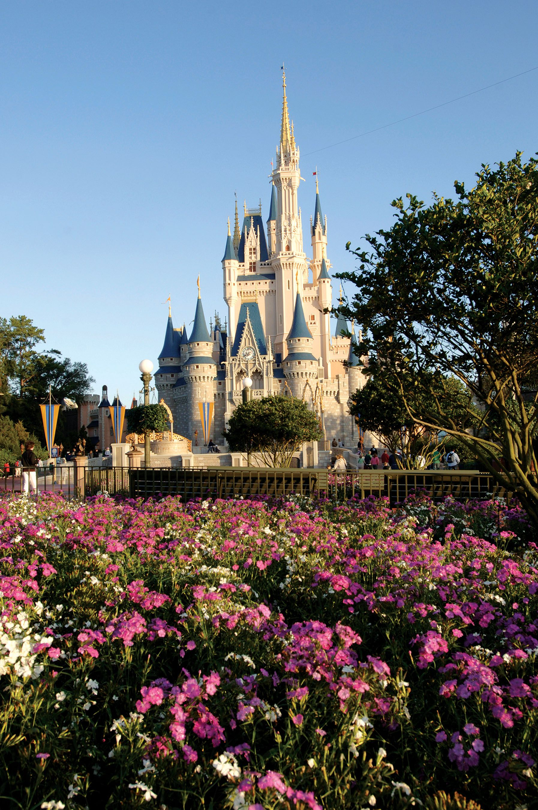 Planning a trip to Disney? Read this first  - The Boston Globe