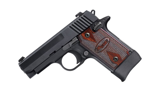 10 Best Handguns For Women Range 365