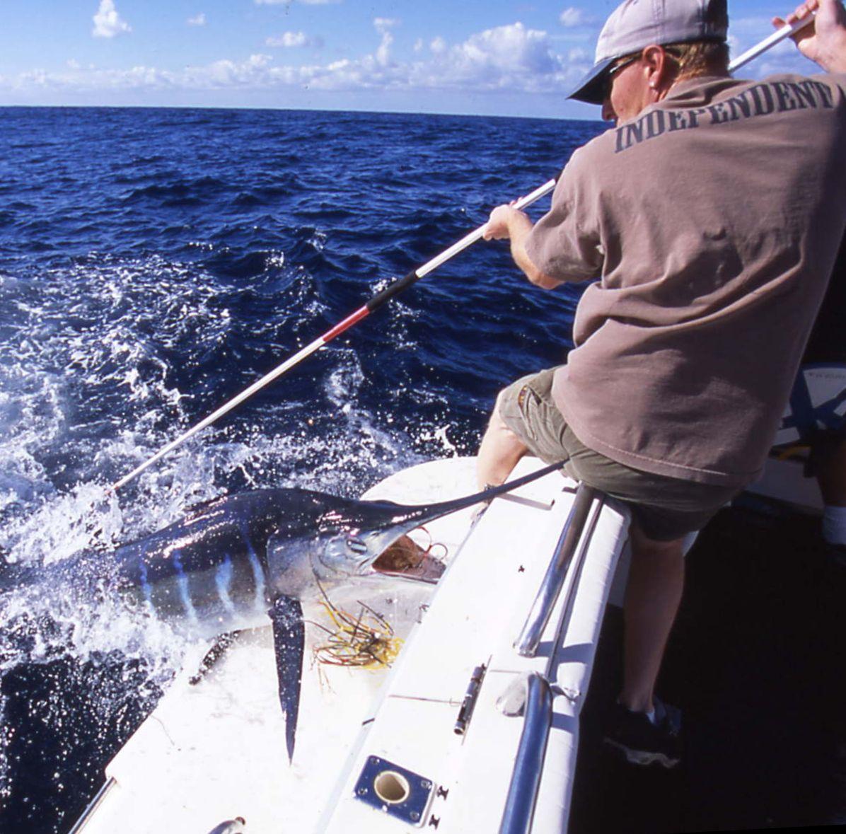 I/'D Rather Be Spear Fishing Sport Steel Metal License Plate Frame
