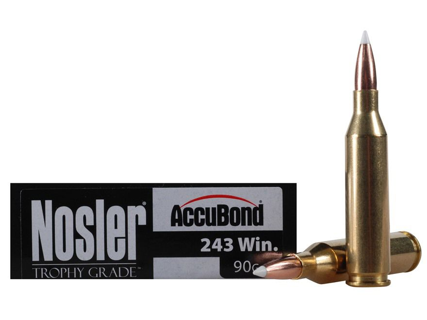 10 of the Top Moose Cartridges and Bullets | Outdoor Life