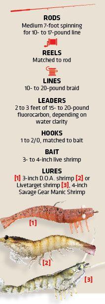 How to Catch Gulf Coast Tripletail | Salt Water Sportsman